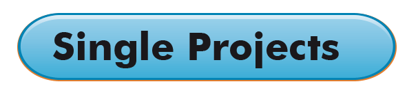 singleProject